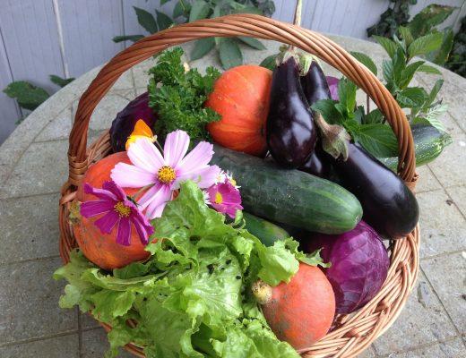 Panier fruits locaux